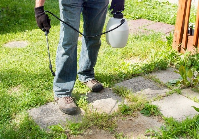 How to Stop Weeds Growing through Gravel